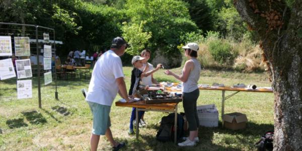 Journée de sensibilisation sur la pelouse calcaire le 7 juillet 2019